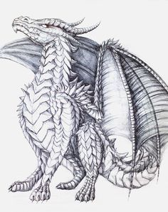 Dragon Coloring Book for Adults Luxury the Proud E by Almieliandri On Deviantart. - Coloring page book ideas - Dragon Coloring Book for Adults Luxury the Proud E by Almieliandri On Deviantart Dragon Fantasy - Dragon Medieval, Celtic Dragon, Fantasy Dragon, Fantasy Art, Adult Coloring Pages, Coloring Books, Art Sketches, Art Drawings, Dragon Coloring Page