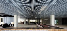 Baffle/Grid Ceilings | Lindner Group Baffle Ceiling, Metal Ceiling, Ceiling Lights, Interior Fit Out, Interior Design, Sustainable Design, Office Interiors, Building, Inspiration