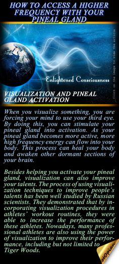 New eye health pineal gland Ideas Spiritual Enlightenment, Spiritual Health, Spiritual Awakening, Spiritual Wisdom, Usui Reiki, Pineal Gland, Psychic Development, Mindfulness Meditation, Reiki Meditation