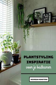 Ben jij op zoek naar plantstyling inspiratie voor je badkamer? In deze blog verzamelde ik de mooiste groene badkamers om lekker inspiratie op te kunnen doen! #plantstyling #plantendecoreren #planten #plants #kamerplanten #hangplanten #badkamerplanten #badkamerstyling #badkamer #badkamerideeën #mevrouwmonstera Plants, Flora, Plant