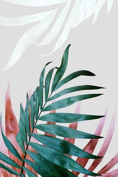 Tropical Leaves. #WallArt #ArtPrint #EtsyFinds | Design by #PrintsProject