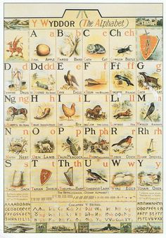 The Welsh Alphabet poster based on the alphabet of T. Evans of Llangynwyd and illustrated by his son, Christopher Evans. It was used in Glamorgan schools in the early twentieth century. In the National Museum Wales.