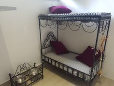 Pokoj 1 - VIP Apartmá Cat Hotel, Bunk Beds, Toddler Bed, Luxury, Cats, Furniture, Home Decor, Child Bed, Gatos