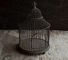 jukavo:    love antique bird cages