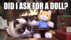 www cartoon grumpy cat - YouTube