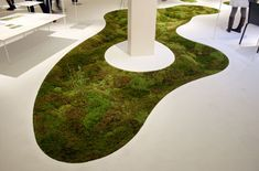 All-Natural Moss Carpet You Can Grow Right in Your Home