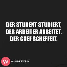 Der Student studiert.  Der Arbeiter arbeitet.  Der Chef scheffelt.