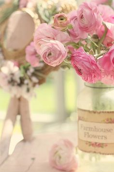 Fleurs. French Country Shabby Chic Ranunculus Flowers in Jar.