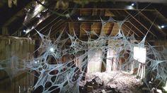 A world wide web.  Knitting cobwebs.  By Shane Waltener