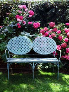 A dusty vintage bench is given new life when set against a backdrop of hot pink hydrangeas. ~ Lovely color combination!