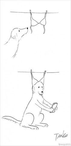 ilustraciones creativas shanghai tango-2