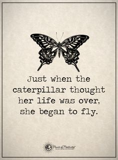 Butterfly Quote Pictures butterfly quotes with images shared deniz yalm Butterfly Quote. Here is Butterfly Quote Pictures for you. Great Quotes, Quotes To Live By, Me Quotes, Motivational Quotes, Inspirational Quotes, Quotes Of Hope, Love Sick Quotes, Hope Quotes Never Give Up, Thank God Quotes