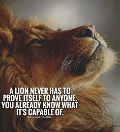 Trendy Quotes About Strength Lion People 48 Ideas Lion Quotes, Wolf Quotes, Wisdom Quotes, True Quotes, Motivational Quotes, Inspirational Quotes, Qoutes, Sarcastic Quotes, Uplifting Quotes