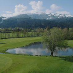 Unser Headgreenkeeper vom Golfplatz Kitzbühel- Schwarzsee-Reith liebt was er tut...... Golf Hotel, Spa Breaks, Hotels, Local Hero, Chef, Golf Courses, Website, Tourism, Alps