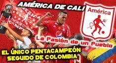 El América de Cali es uno de los más exitosos clubes de Colombia. Ha ganado 13 veces la Liga Colombiano. Es el único que ha logrado ganar 5 veces segudias la Liga de Colombia.  A nivel internacional, es el club colombiano que mas finales de la Copa Copa Libertadores disputo. Las 4 quedo Subcampeón. En 1999 conquista la Copa Merconorte ante el Independiente Santa Fe. Otro titulo internacional, fue la Copa Simón Bolivar, lograda en 1975. Al club se le conoce también con los apodos de los…