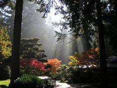 Fall Gallery | Portland Japanese Garden