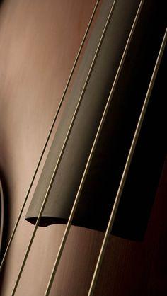 El que tiene las manos limpias y puro el corazón; el que no rinde culto a los ídolos ni jura falsamente: él recibirá la bendición del Señor, la recompensa de Dios, su salvador.  double bass strings