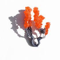 Anello The Spider, collezione From Dreams & Dust © Natalie Smith