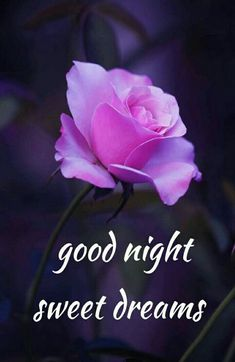 good night sweet dreams Good Night Quotes for Love. The best good night quotes and msg for your sweet love. You will like this lovely good night Quotes. New Good Night Images, Romantic Good Night Image, Good Night Love Quotes, Beautiful Good Night Images, Cute Good Night, Good Night Friends, Good Night Gif, Good Night Messages, Good Night Wishes