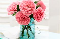 Check out our collection of fresh cuts at 1800flowers.com