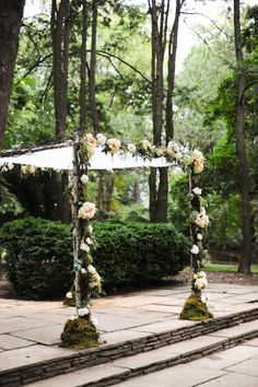 Willow Chuppah cabbage roses, greens and fillers.