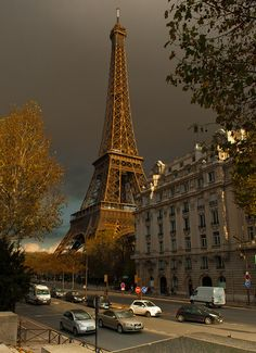 Autumn in Paris. This is where I shall be proposed to, yep. Or my wedding will be. Or both.
