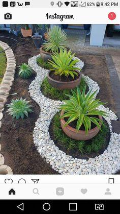 Garden Yard Ideas, Garden Projects, Landscape Design, Garden Design, Small Backyard Landscaping, Landscaping Ideas, Backyard Pools, Backyard Ideas, Florida Landscaping