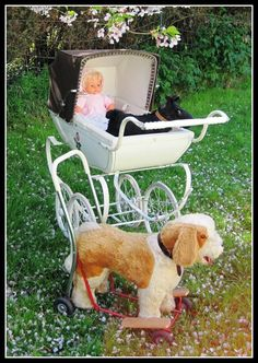 So, I had the pram and my brothers had the push and ride dog