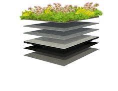 XF301 Sedum Standard System by Xeroflor. Pre-vegetated mat, two layers of water retention, drainage mat and root barrier are loose laid on roofing membrane. No loose soil makes for an easy and quick installation.