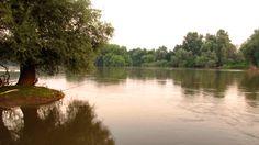 Fishing in the serenity of Maritza River. Pesca en la serenidad del río Maritza. Angeln in der Ruhe des Maritza-Flusses. Realwobbler