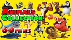 Animals Finger Family Song + Learn Animals For Kids Amazing | Handplaytv...