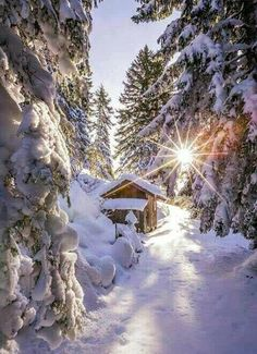 Soooooo nice #traveling #snowwhite #winter
