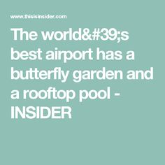 The world& best airport has a butterfly garden and a rooftop pool - INSIDER Rooftop Pool, Singapore, Butterfly, International Airport, Cancun, World, Places, Garden, Restaurants