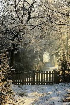 Winter path...