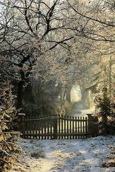 Winter path...