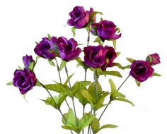 "The purple rose symbolizes enhancement, majesty and glory. People use roses to send a silent and yet extremely important message.   Silk Purple Rose Bud Bush with Leaves is made of quality silk measuring 16-1/2"" Long with bud flowers and 8 stems.  Prices are per ros"