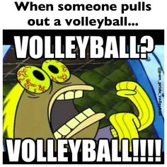 hahaha Volleyball Facts, Play Volleyball, Volleyball Players, Softball, Volleyball Bedroom, Sports Mom, World Of Sports, Eat Sleep, Gain