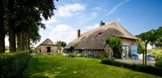 rieten-daken