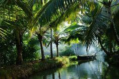 Homestay and Canoe tours from Munroe Island through the Ashtamudi Lake Backwaters. Kerala India, South India, India India, Seychelles, World Smile Day, Kerala Backwaters, Kerala Tourism, Jolie Photo, India Travel