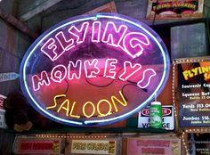flying monkeys saloon key west!!! Grain Train