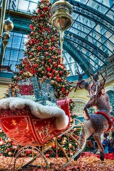 Cristhmas Tree Decorations Ideas : Christmas at the Bellagio Hotel, Las Vegas, Nevada Christmas In The City, Beautiful Christmas Trees, Christmas Scenes, Noel Christmas, Little Christmas, Christmas Pictures, Winter Christmas, Christmas Lights, Vintage Christmas