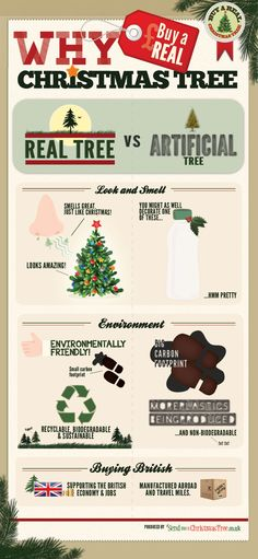 Why Buy A Real Christmas Tree [Infographic]