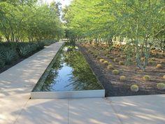 REFLECTION POOL AT SUNNYLANDS CENTER & GARDENS AT THE ANNENBERG RETREAT AT SUNNYLANDS with desert landscape garden designed by The Office of James Burnett.