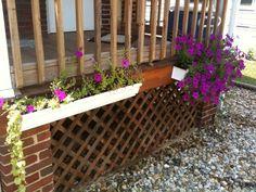 Gutter planters:  Plant mosquito repellent citronella, marigolds, thyme, catnip around the perimeter of the deck.