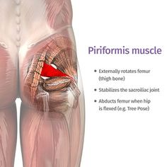 yoga for piriformis syndrome ekhartyoga