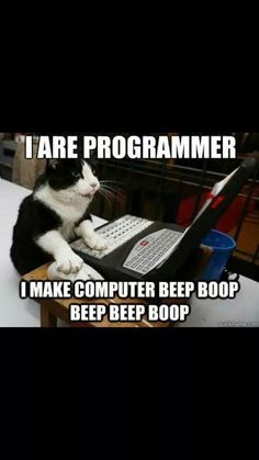 I are programmer too!
