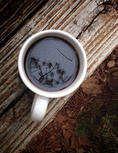 Babe, where did you get this coffee with dandelions in it? #itsamazing #andfunny
