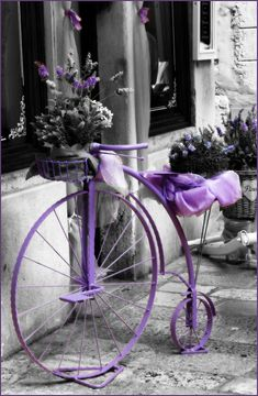 "Purple Splash of Color - ""The Lavender Bicycle"" Purple Love, All Things Purple, Shades Of Purple, Purple Stuff, Color Splash, Color Pop, Splash Art, Black And White Colour, Black And White Pictures"
