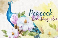 Check out Peacock&Magnolia pattern set by Watercolor Gallery on Creative Market