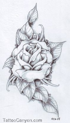Rose Tattoo Outline picture 14694
